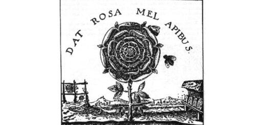 Rudolf Steiner, Różo-krzyż i Antropozofia