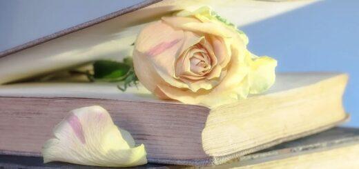 Piękno i sztuka w antropozofii Rudolfa Steinera (7) – literatura